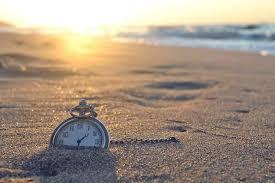 Afbeelding met buiten, strand, gras, veld Automatisch gegenereerde beschrijving